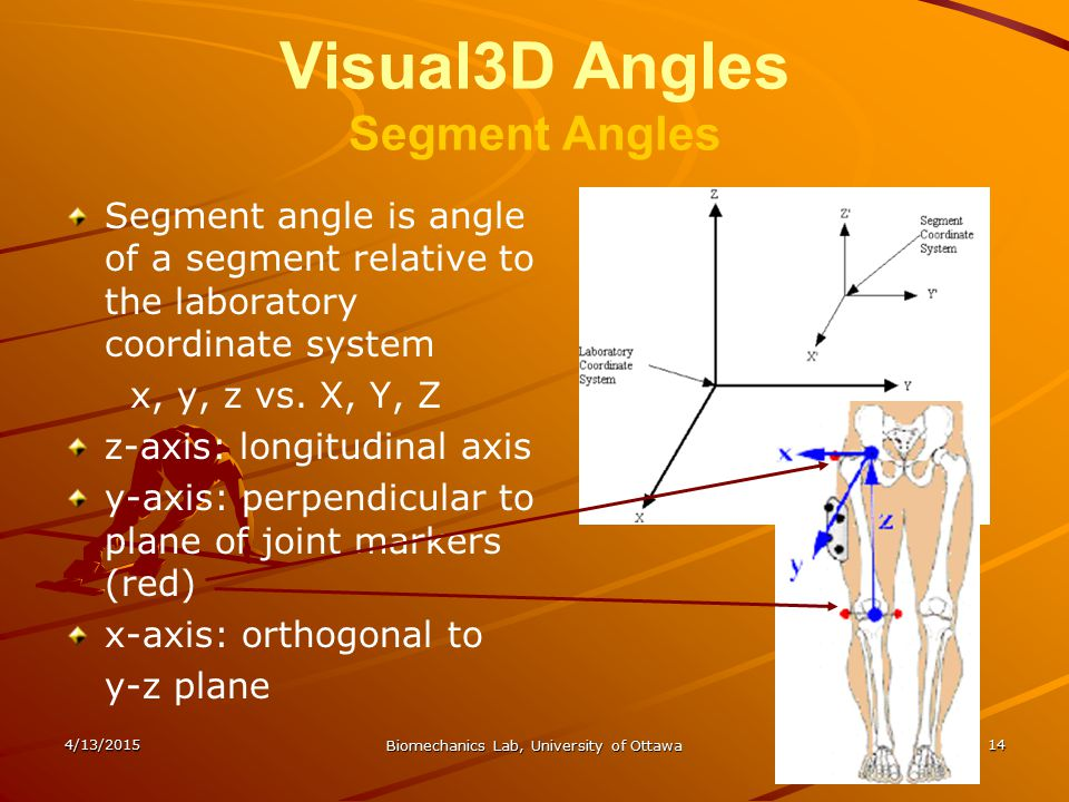 Visual3D Angles Segment Angles