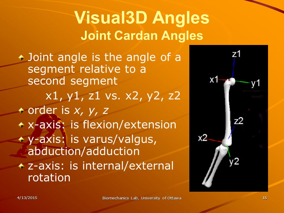 Visual3D Angles Joint Cardan Angles