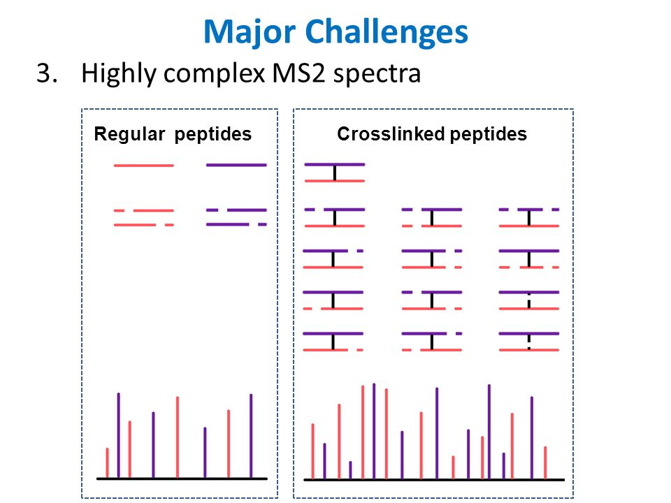 Major Challenges Highly complex MS2 spectra Regular peptides