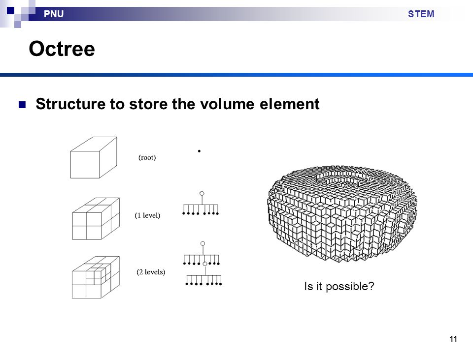 Octree Structure to store the volume element Is it possible