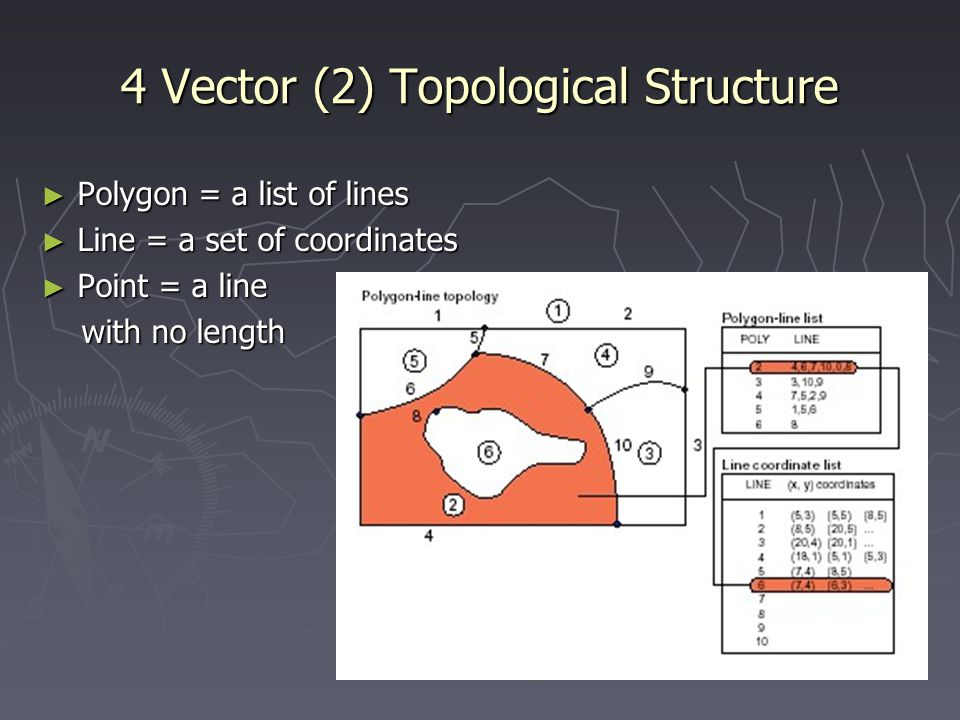 4 Vector (2) Topological Structure