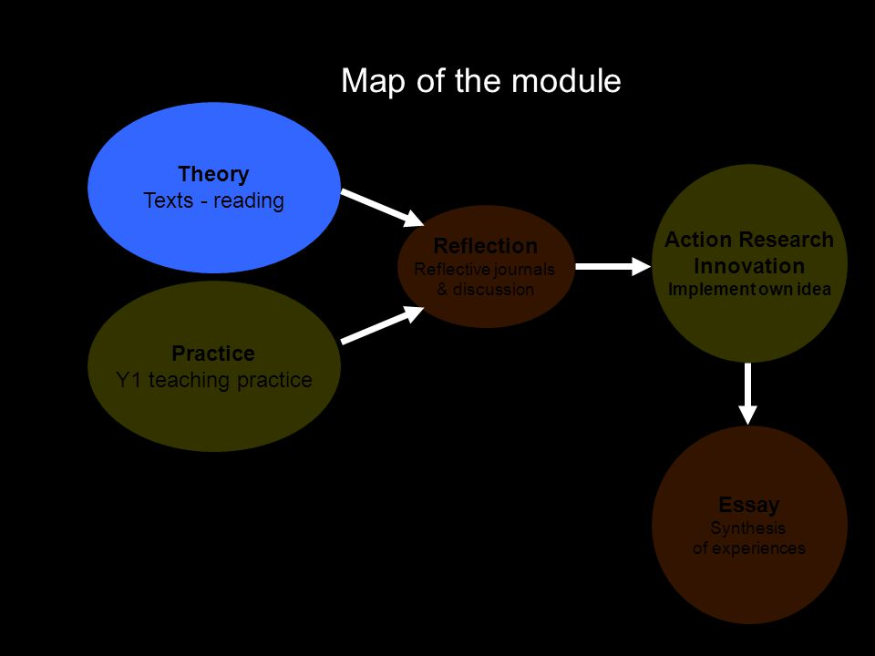 Map of the module Theory Texts - reading Action Research Innovation