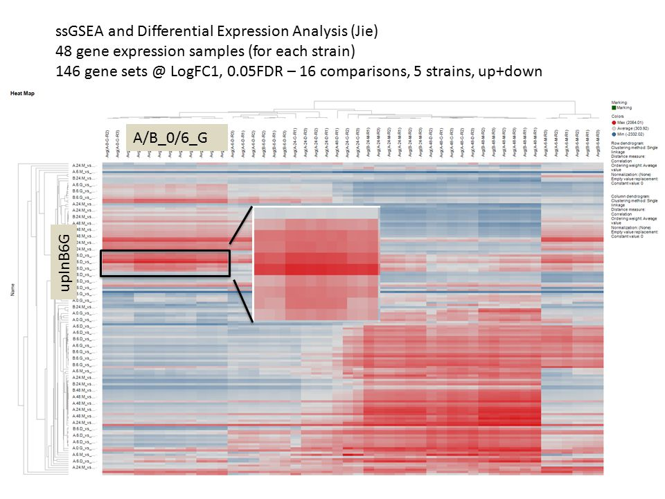 ssGSEA and Differential Expression Analysis (Jie)