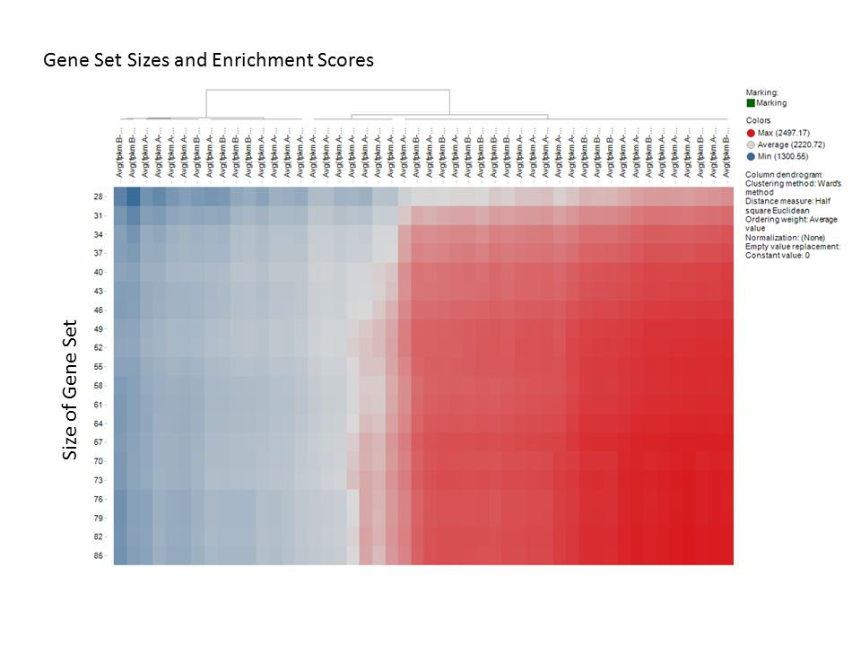 Gene Set Sizes and Enrichment Scores