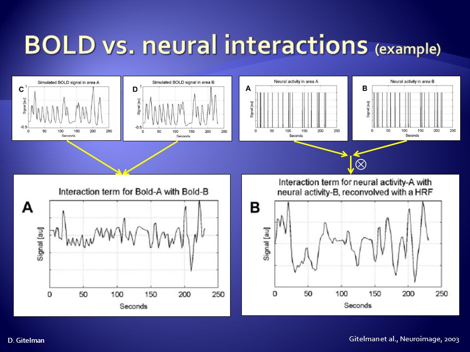 BOLD vs. neural interactions (example)
