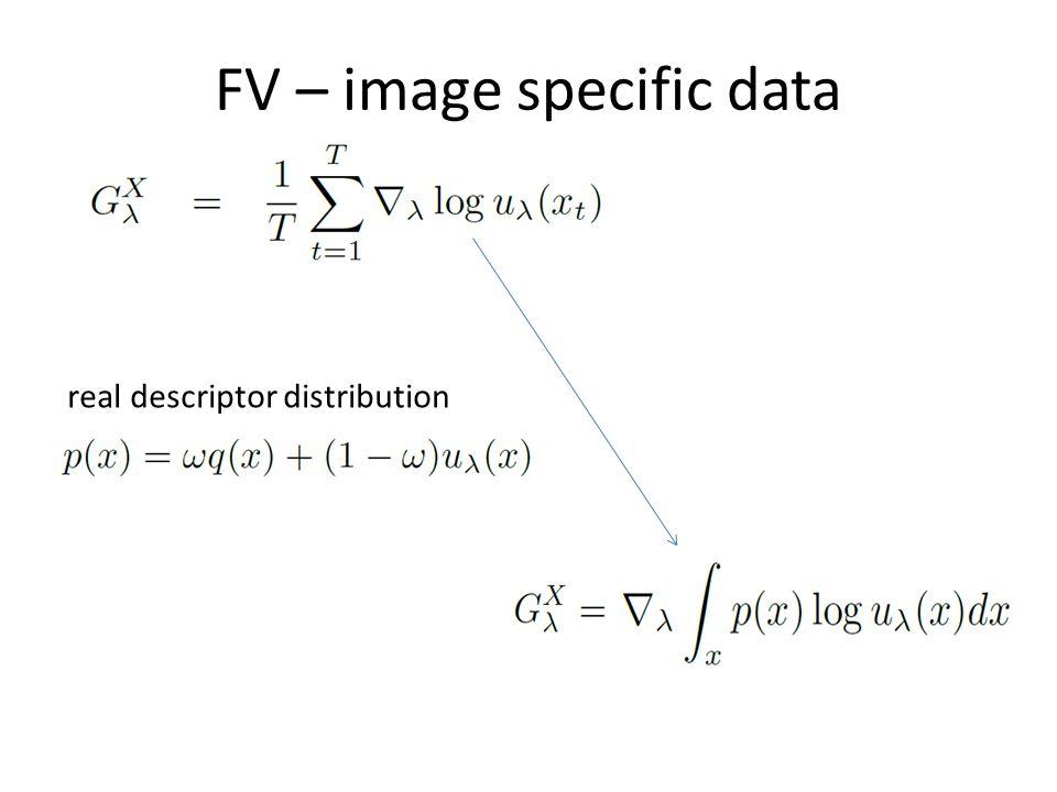 FV – image specific data