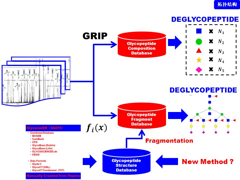 GRIP 𝒇 𝒊 (𝒙) DEGLYCOPEPTIDE DEGLYCOPEPTIDE New Method Fragmentation