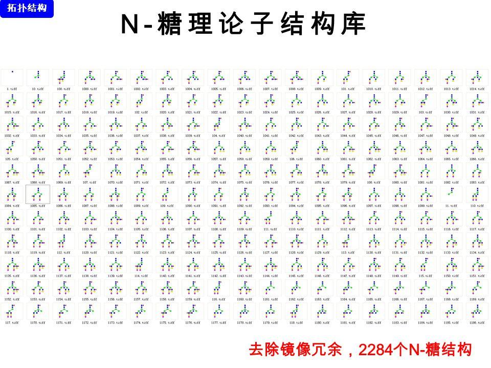 拓扑结构 N-糖理论子结构库 去除镜像冗余,2284个N-糖结构