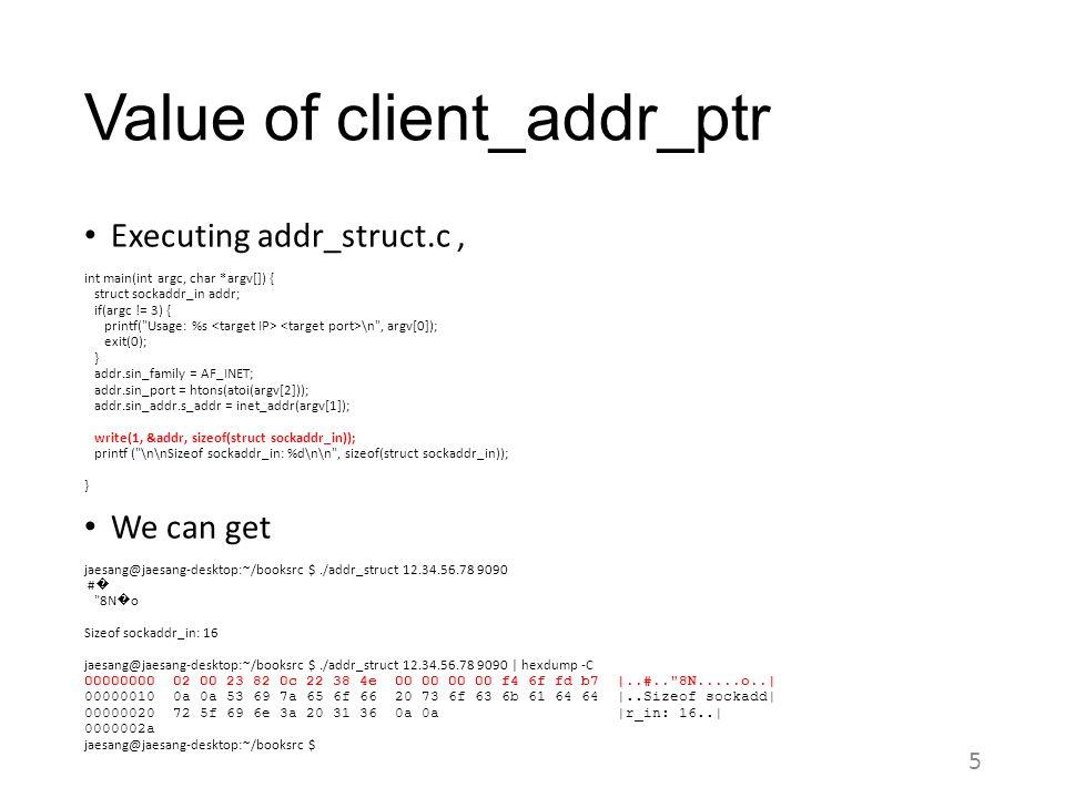 Value of client_addr_ptr
