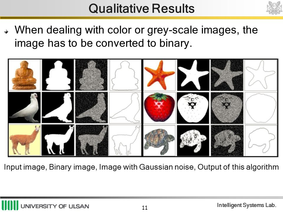 Qualitative Results When dealing with color or grey-scale images, the image has to be converted to binary.