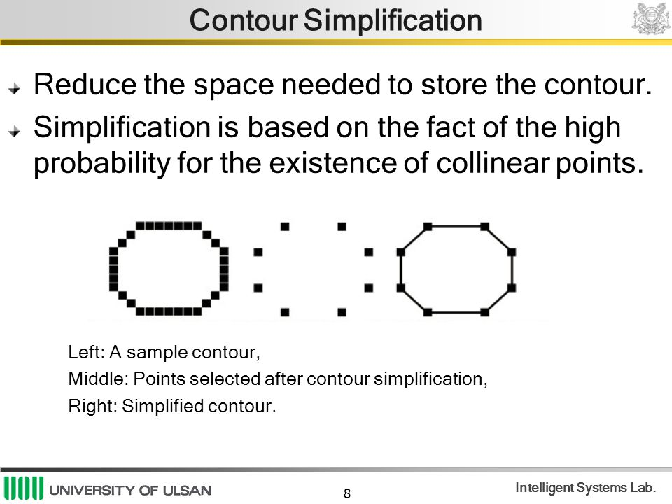 Contour Simplification