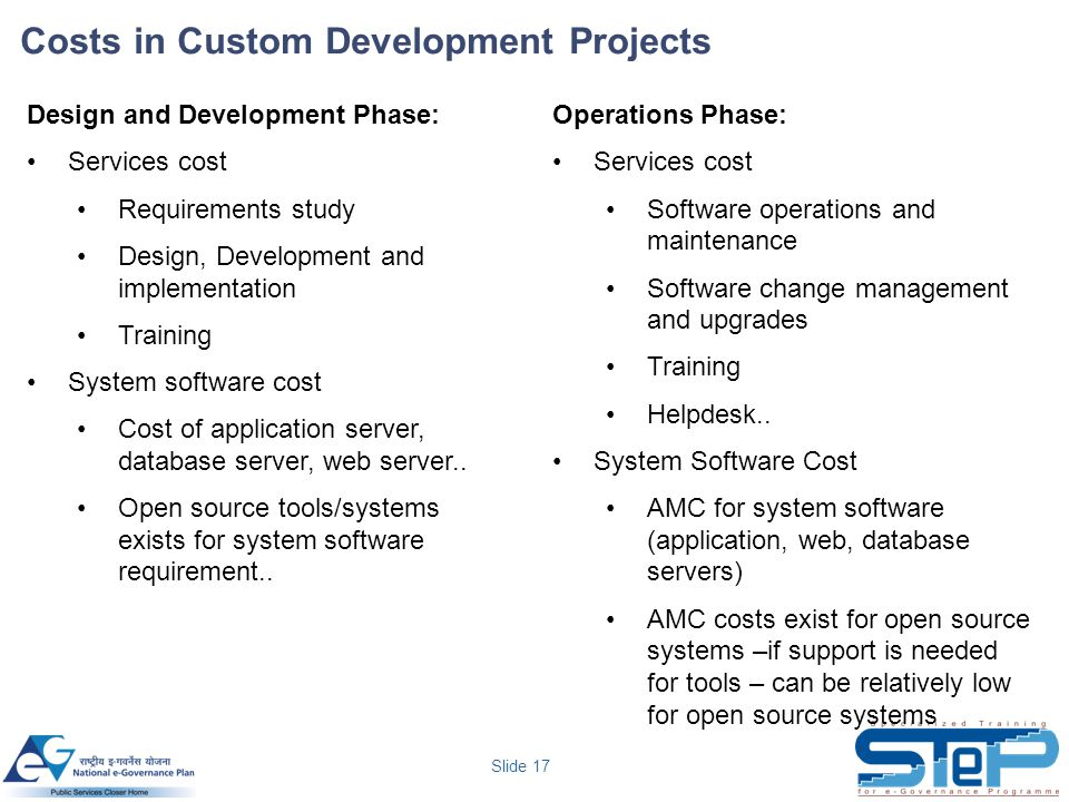 Costs in Custom Development Projects