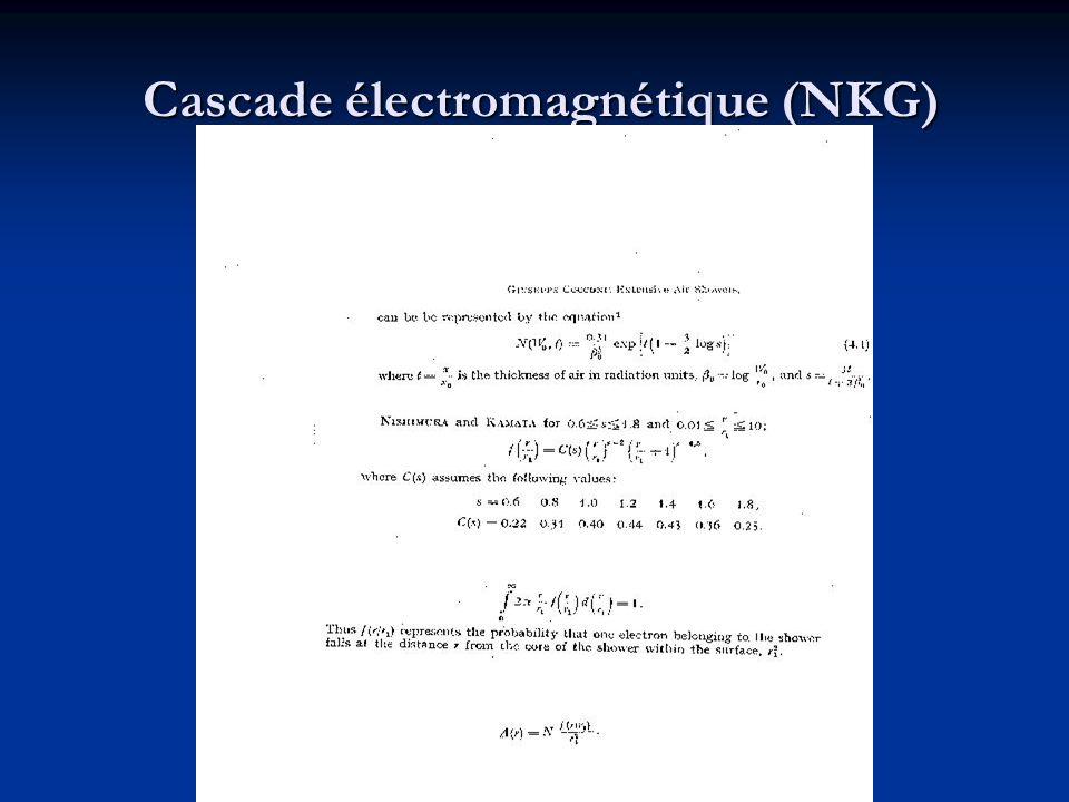 Cascade électromagnétique (NKG)