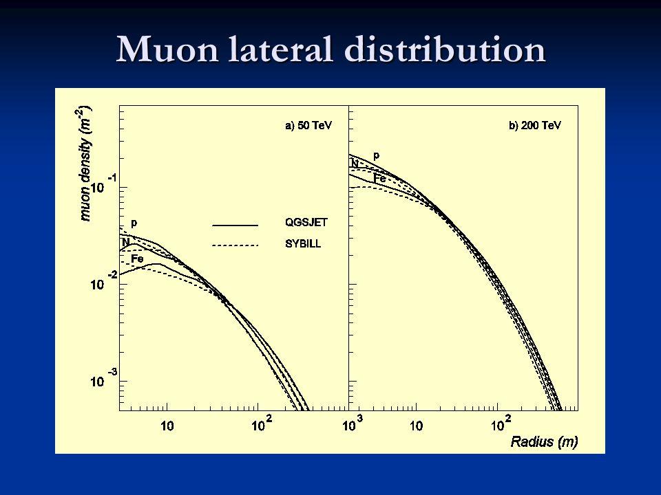Muon lateral distribution