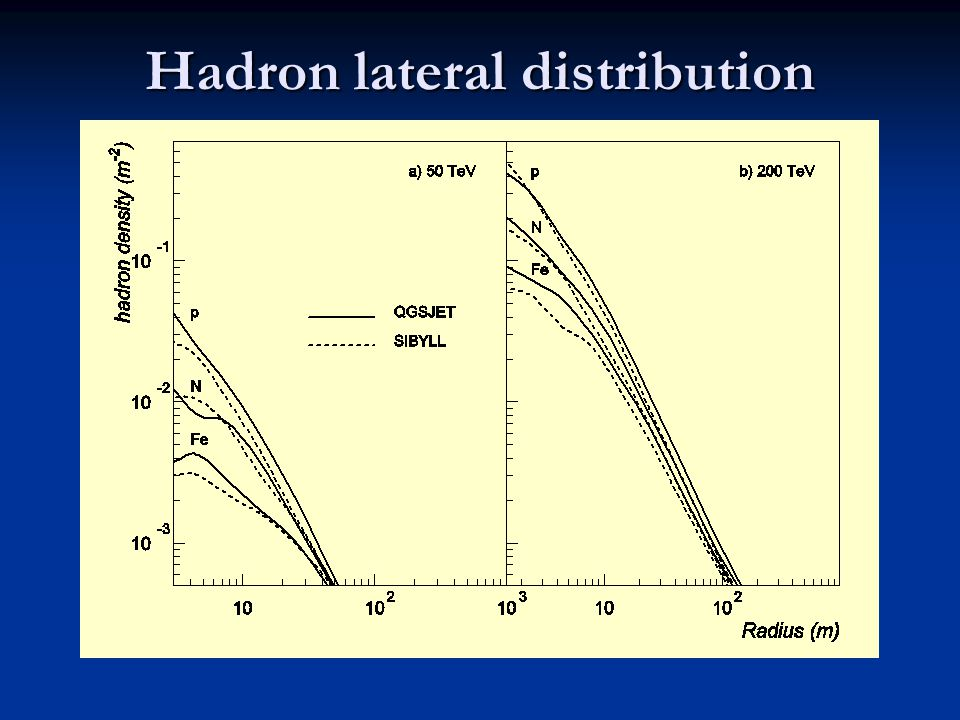 Hadron lateral distribution