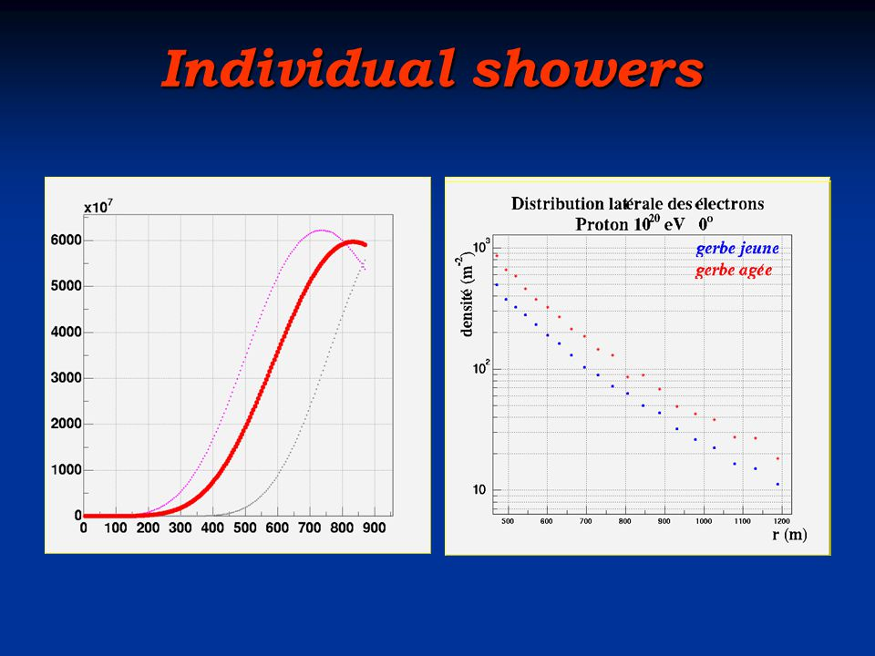 Individual showers