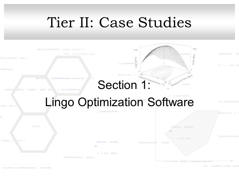 Lingo Optimization Software