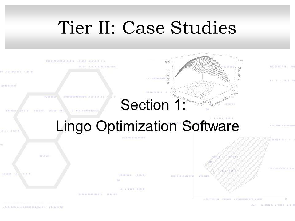 Lingo Optimization Software