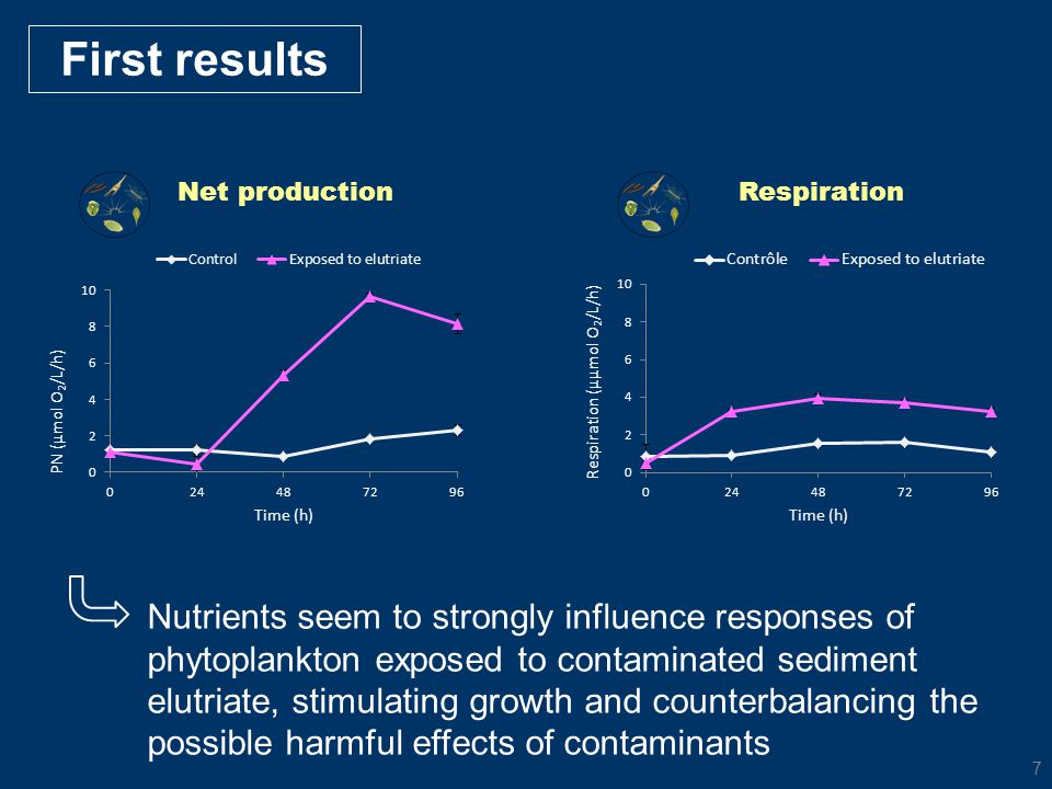 First results Net production. Respiration.