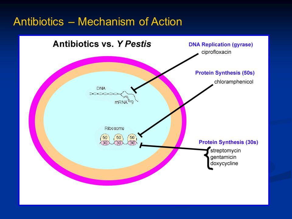 Antibiotics – Mechanism of Action