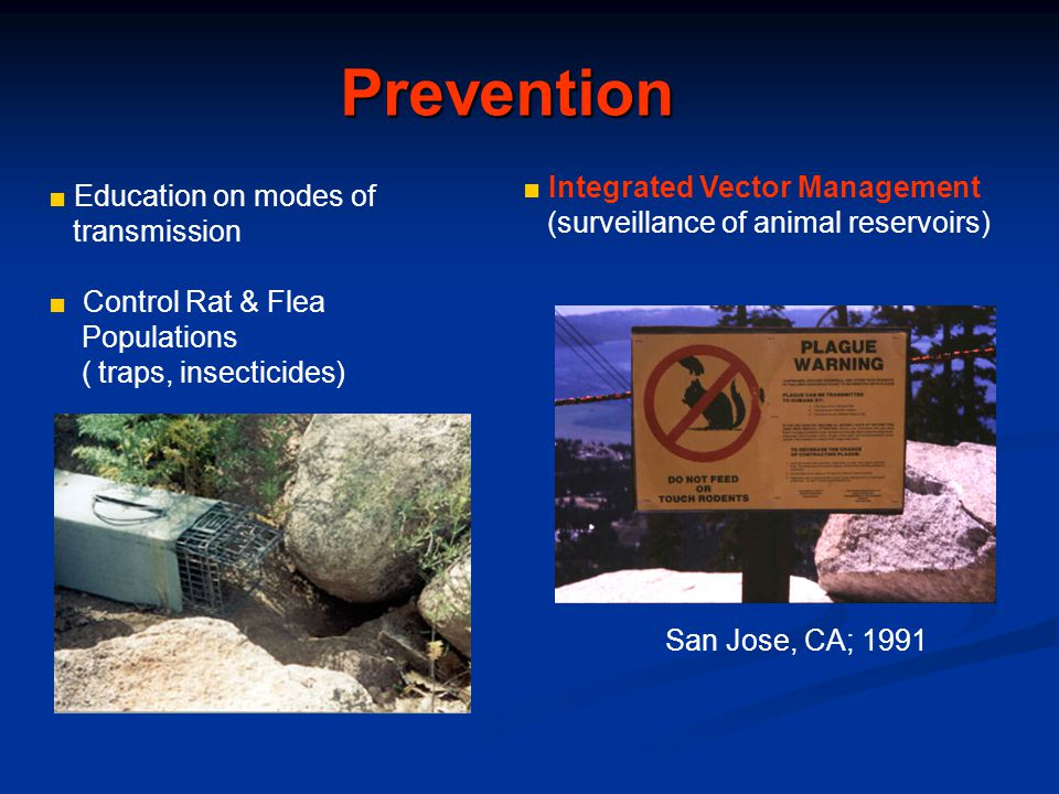 Prevention ■ Integrated Vector Management ■ Education on modes of
