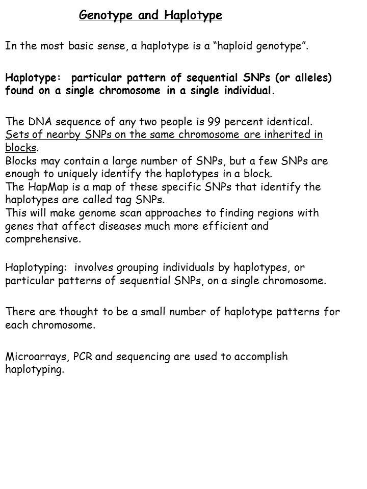 Genotype and Haplotype