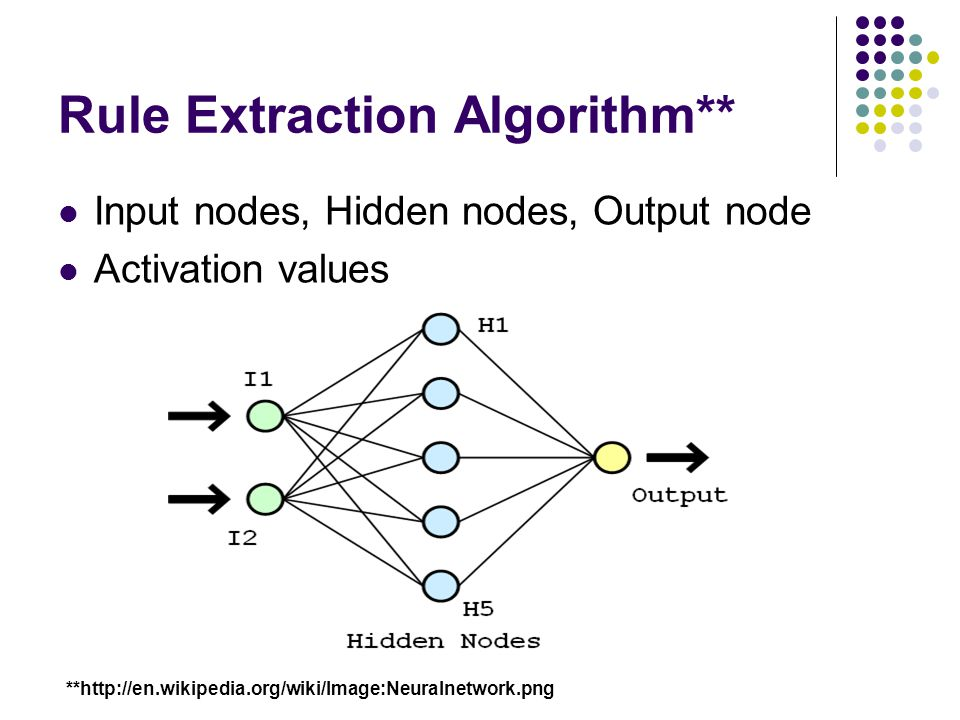 Rule Extraction Algorithm**