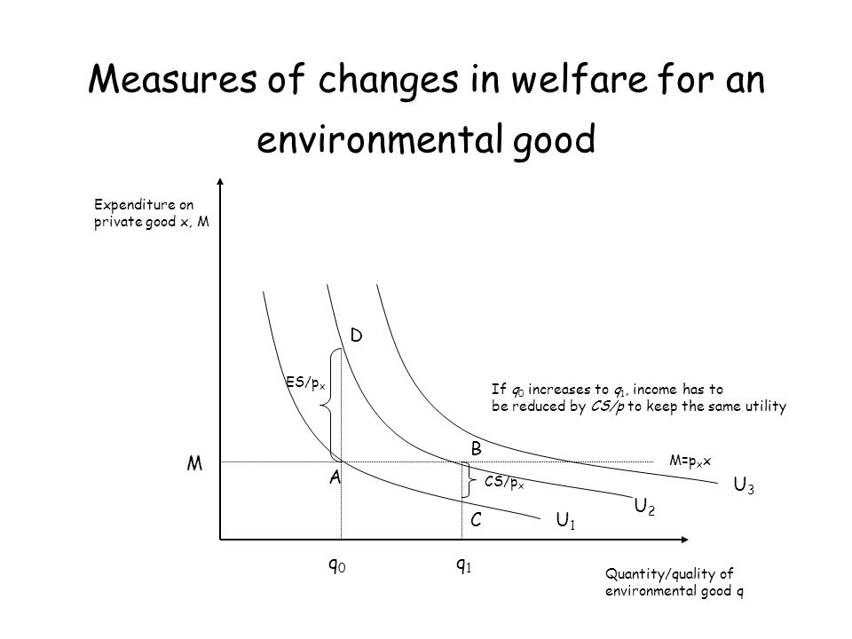 Measures of changes in welfare for an environmental good