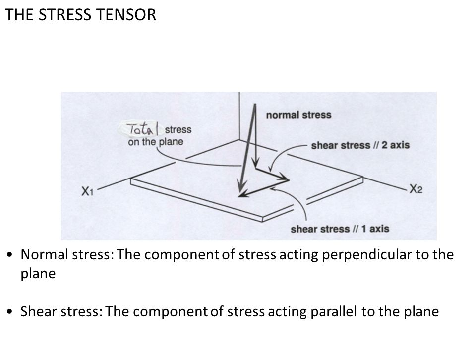 THE STRESS TENSOR Normal stress: The component of stress acting perpendicular to the plane.