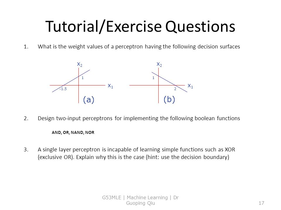 Tutorial/Exercise Questions
