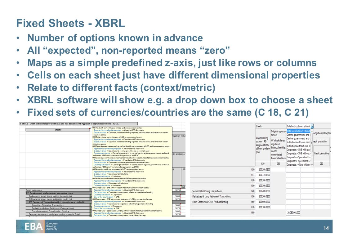 Fixed Sheets - XBRL Number of options known in advance