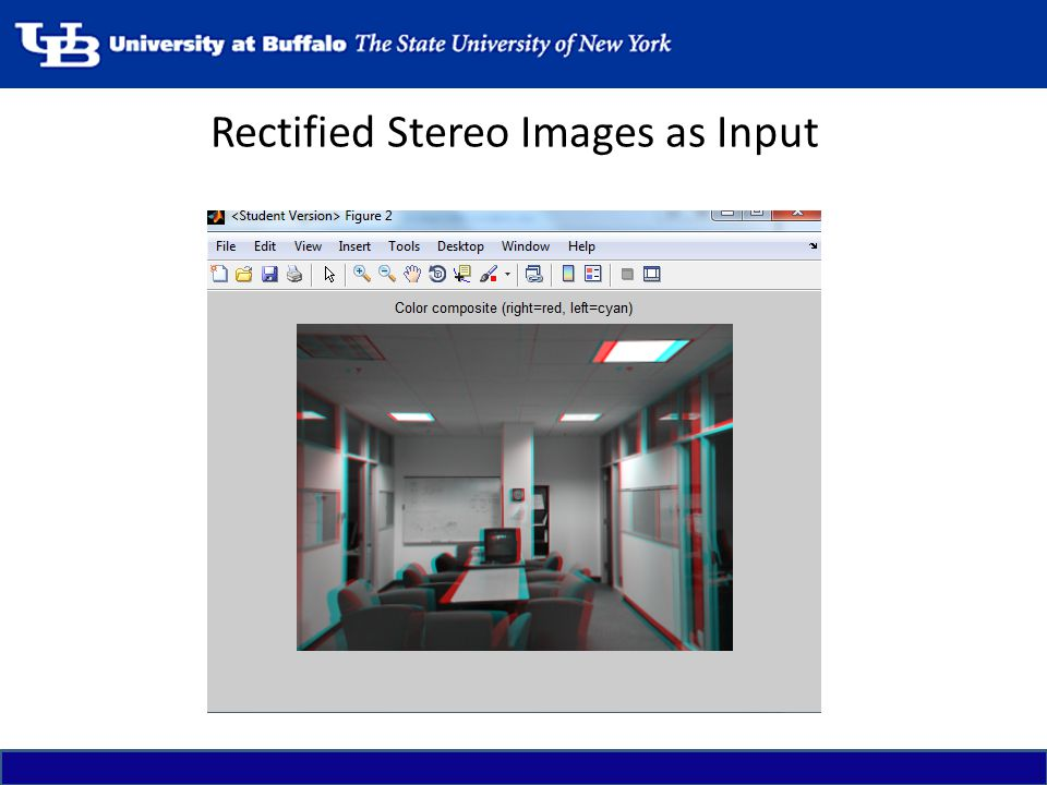 Rectified Stereo Images as Input