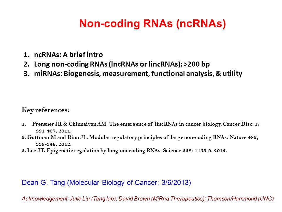 Non-coding RNAs (ncRNAs)