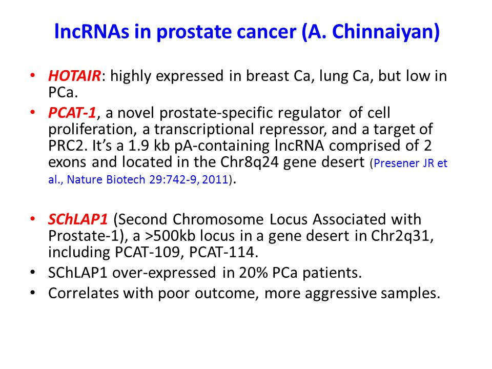 lncRNAs in prostate cancer (A. Chinnaiyan)