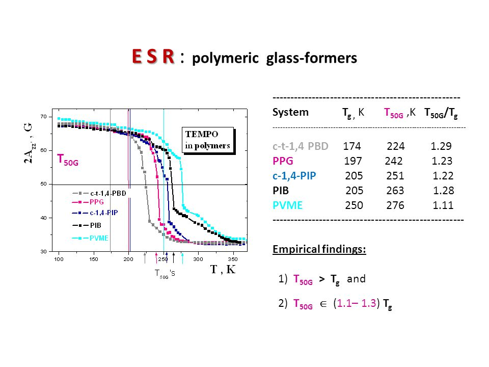 E S R : polymeric glass-formers