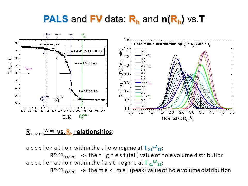 PALS and FV data: Rh and n(Rh) vs.T