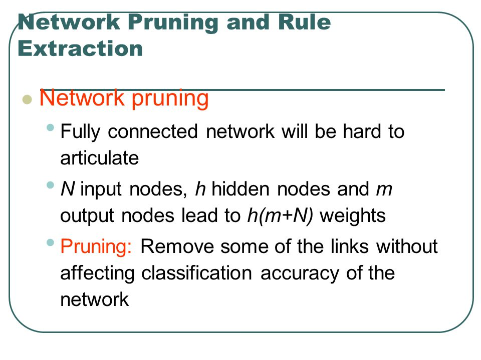 Network Pruning and Rule Extraction