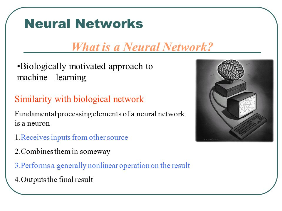 What is a Neural Network