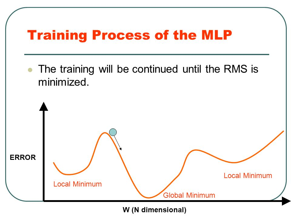 Training Process of the MLP