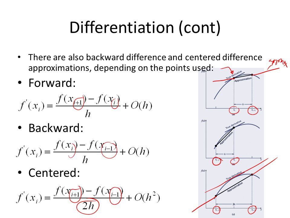 Differentiation (cont)