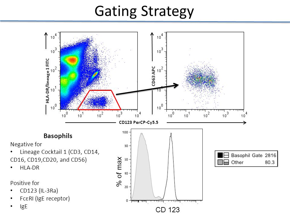 Gating Strategy Gating Strategy Basophils % of max CD 123 Negative for