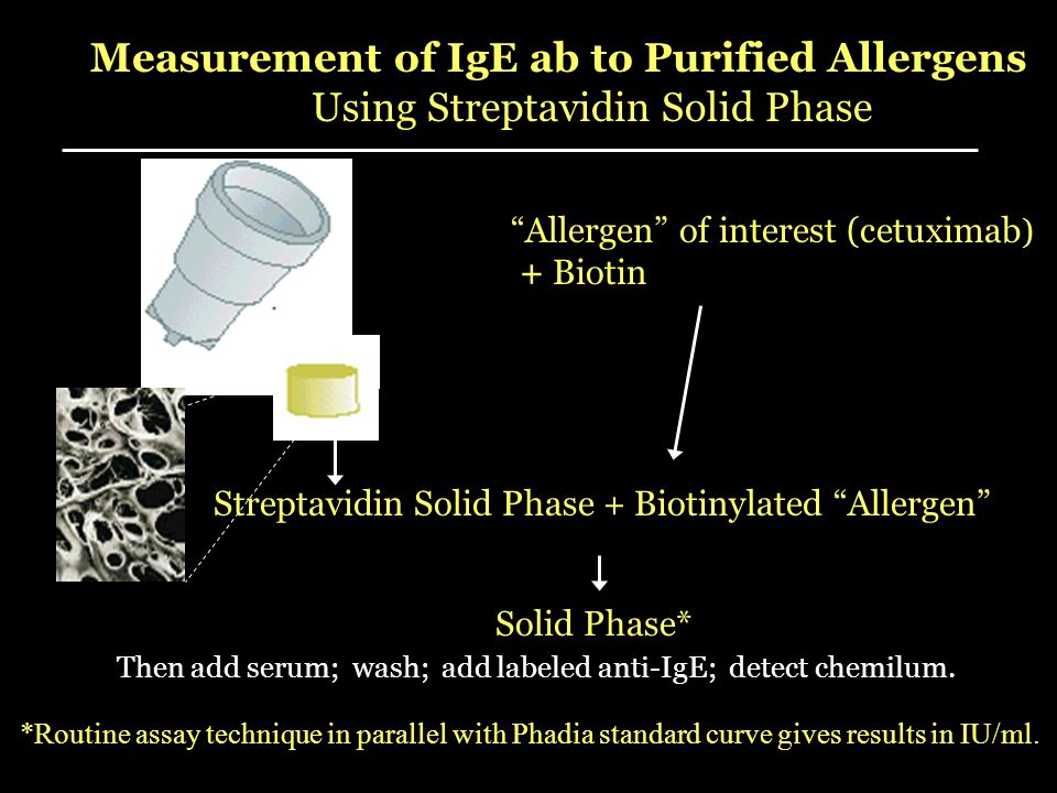 Measurement of IgE ab to Purified Allergens
