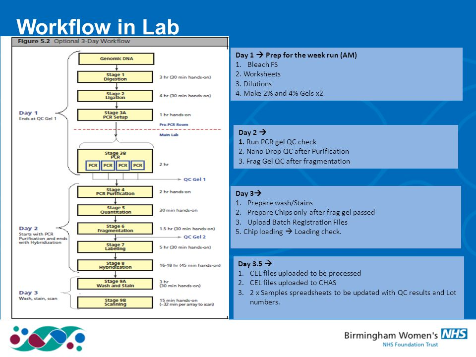 Workflow in Lab Arial regular for the body copy…