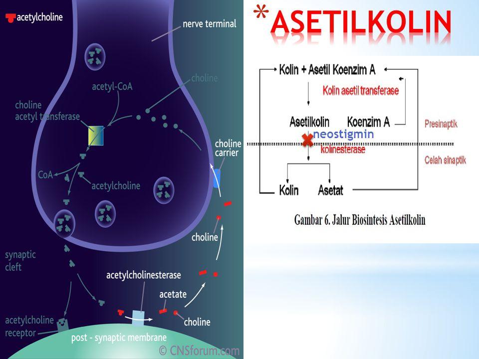 ASETILKOLIN neostigmin
