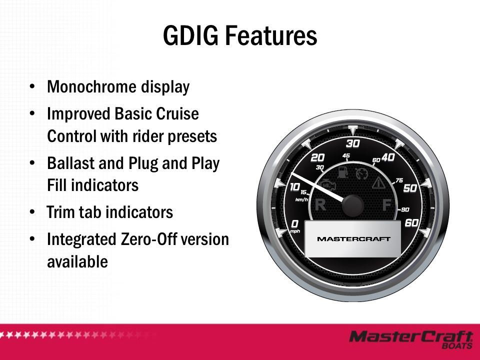 GDIG Features Monochrome display