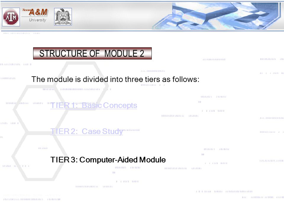 STRUCTURE OF MODULE 2 The module is divided into three tiers as follows: TIER 1: Basic Concepts.