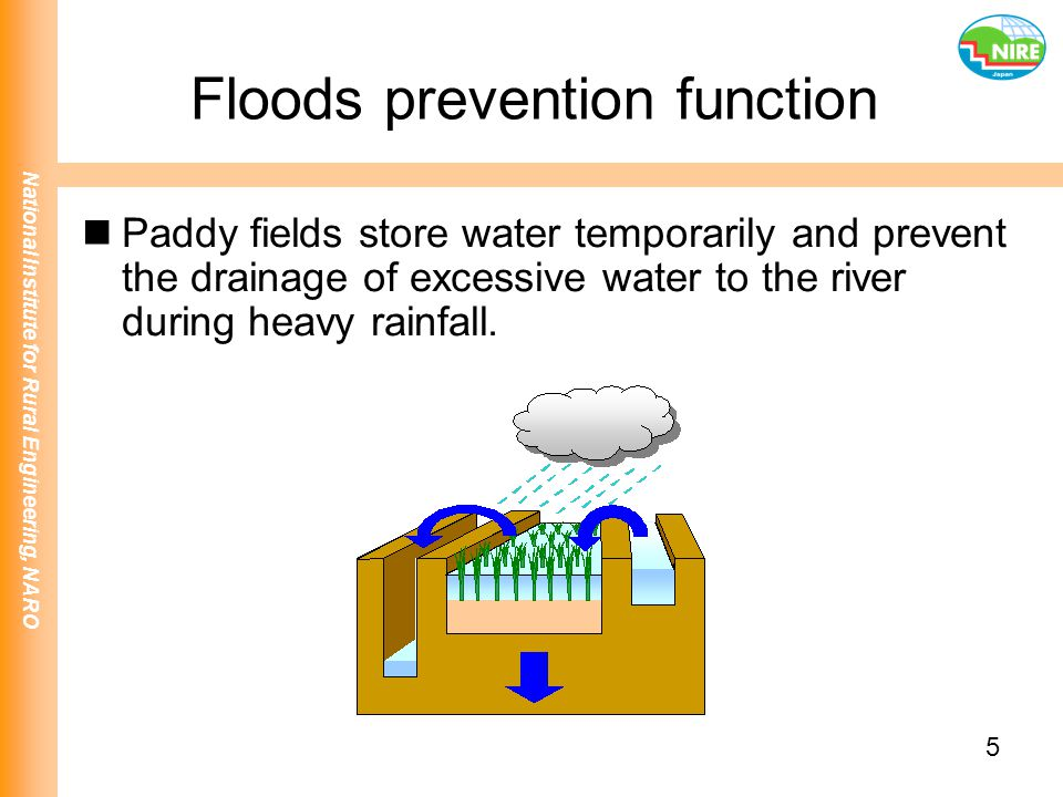 Floods prevention function