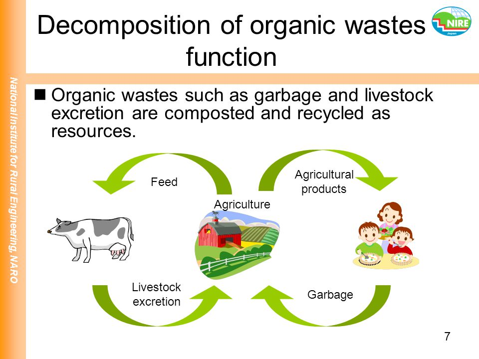 Decomposition of organic wastes function