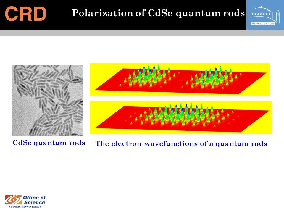 Polarization of CdSe quantum rods