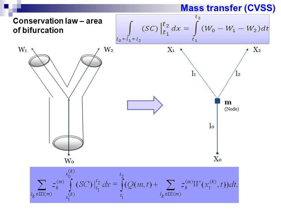 Mass transfer (CVSS) Conservation law – area of bifurcation W1 W2 X1
